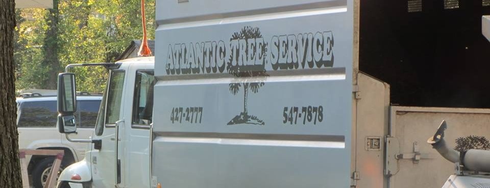 A Atlantic Tree Service Truck